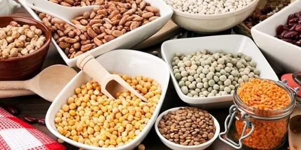 Продукты богатые растительным белком список