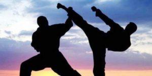 Виды боевых искусств