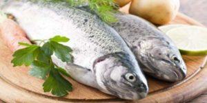 Какая рыба самая полезная для человека