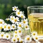 Лекарственные свойства ромашки, чистотела и крапивы