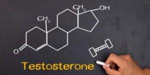 Как увеличить тестостерон в организме мужчины